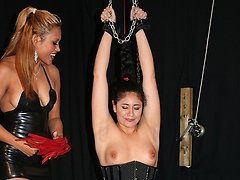 Maxine ties up new slave girl Serpent feeling the burn from some teasing nipple torment